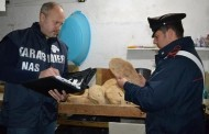 Napoli: Sequestrati 280Kg Di Pane Abusivo