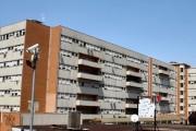 Benevento: Mangia Funghi Del Suo Giardino, Morta 84Enne