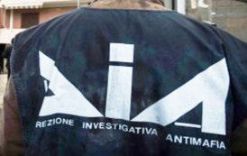 Arrestati Imprenditori-Animatori Della Movida Napoletana