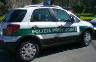 Agente Polizia Provinciale Ai Domiciliari