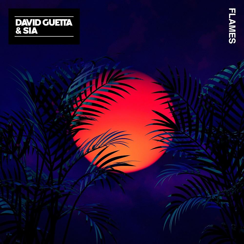 David Guetta & Sia 'Flames'
