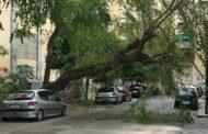 Vento Forte: Cade Palo Della Segnaletica Sulla Nola-Villa Literno